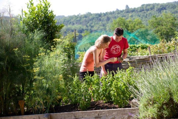 Camping Le Paradis - Images - Jardin aromatique