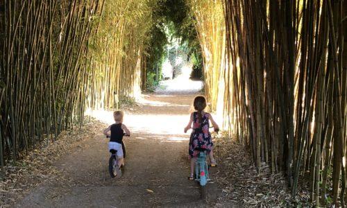 Camping Le Paradis - Images - Bambous et enfants à vélo